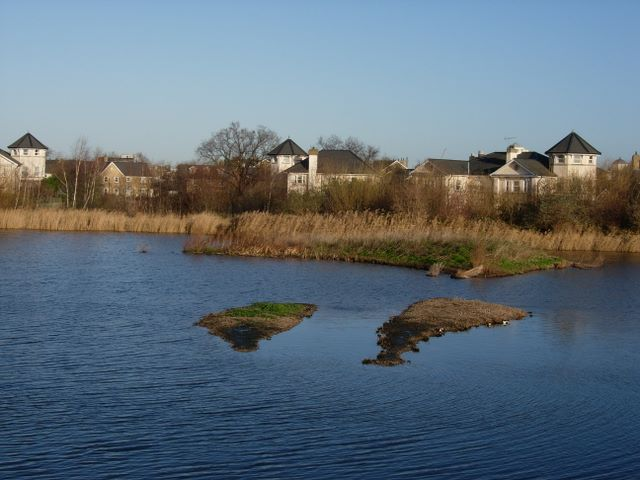 London Wetland Centre and housing