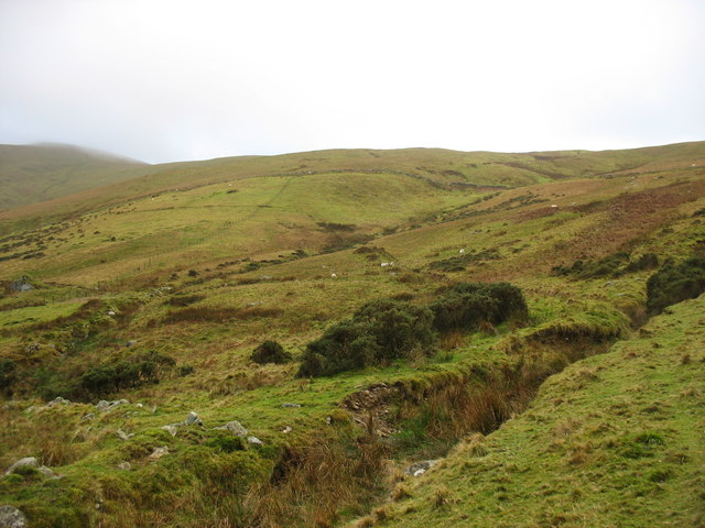 Sheep grazing land on the slope above Cwm Ty-du