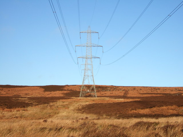 Pylon and Whitefield Edge
