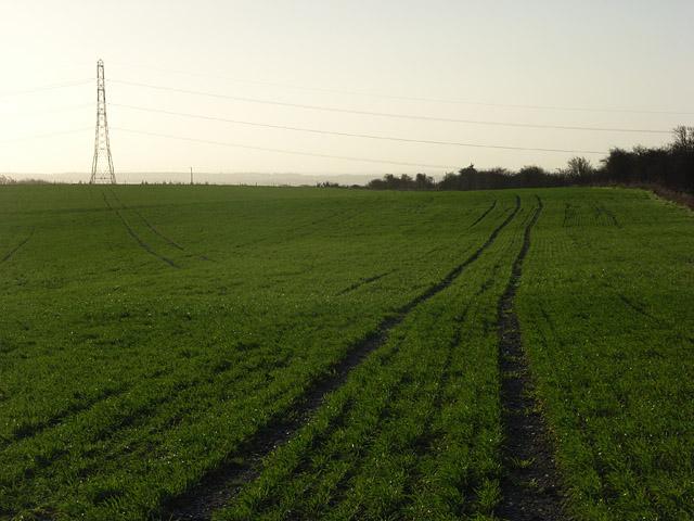 Farmland and pylon, Ashley Warren