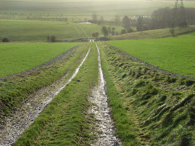 Track above Hare Warren