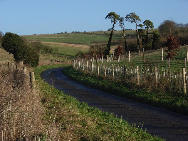 Lane at Hare Warren