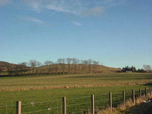 Craigour Hill in winter