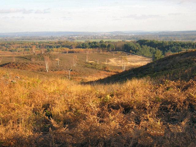 Ricochet Hill, Ash Military Ranges