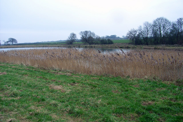 RSPB Water Fowl Refuge