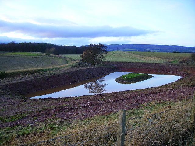 New duck flight pond