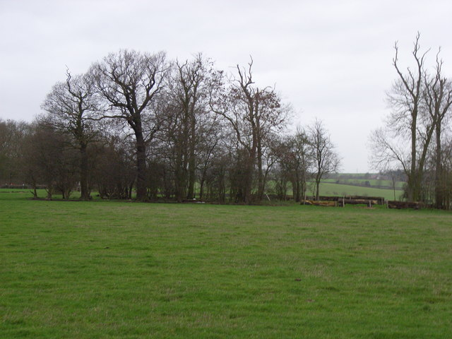 Looking towards Duke's Wood