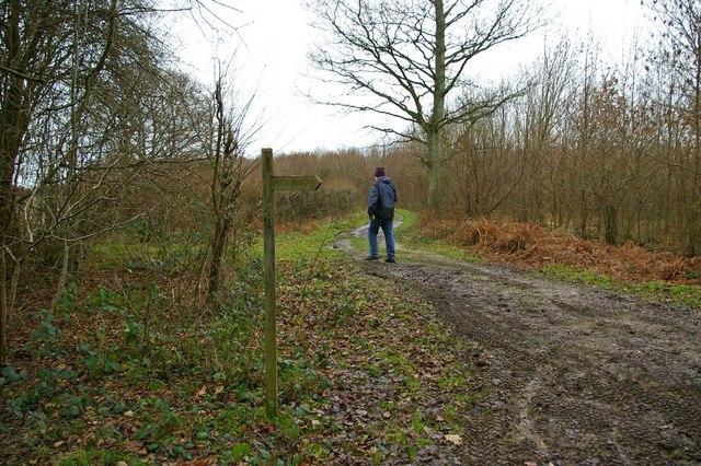 Path to Crawfold Farm