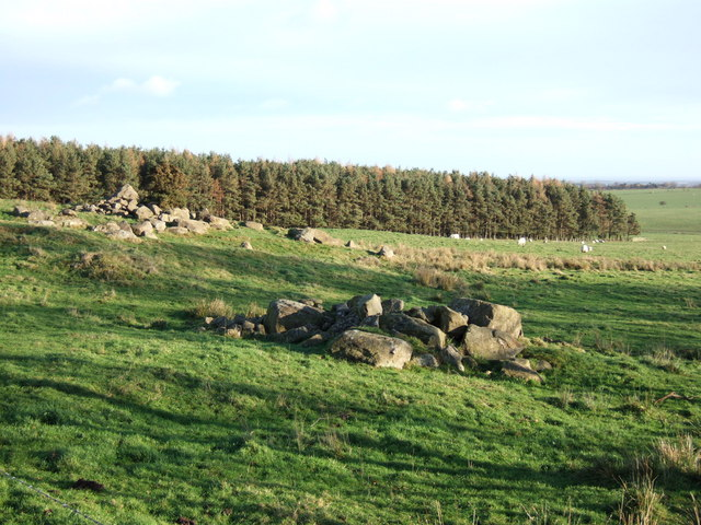 Cairns near Lynch Wood