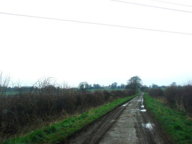 Headley Lane, Bramham Moor