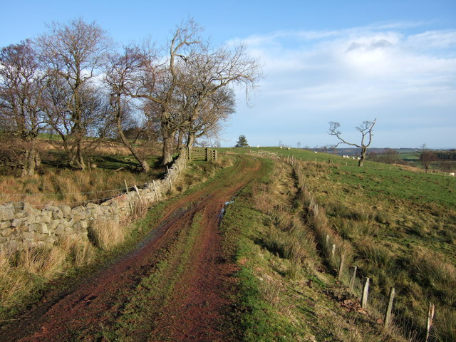 Track from Woodhead