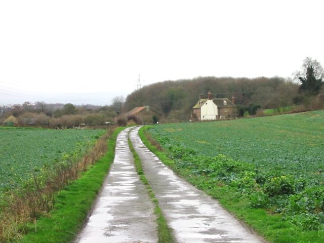 Track leading to Thornton Farm