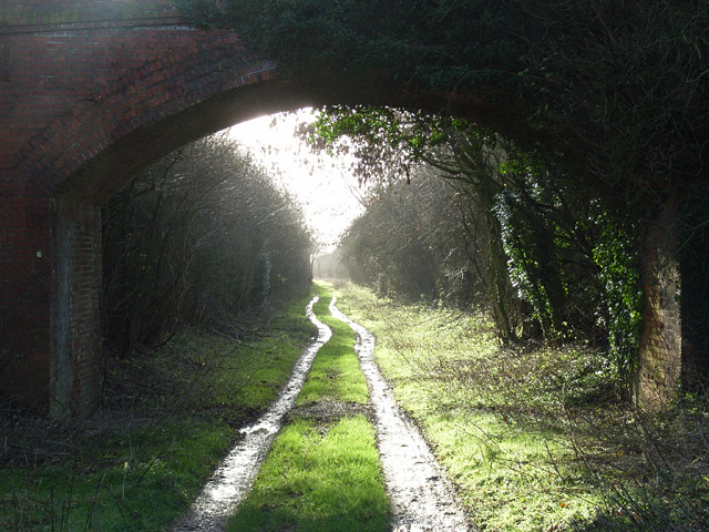 The old railway near Litchfield