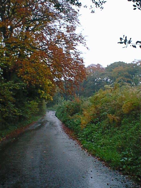 Hunt Lane