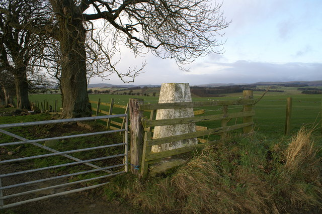 Trigpoint 164