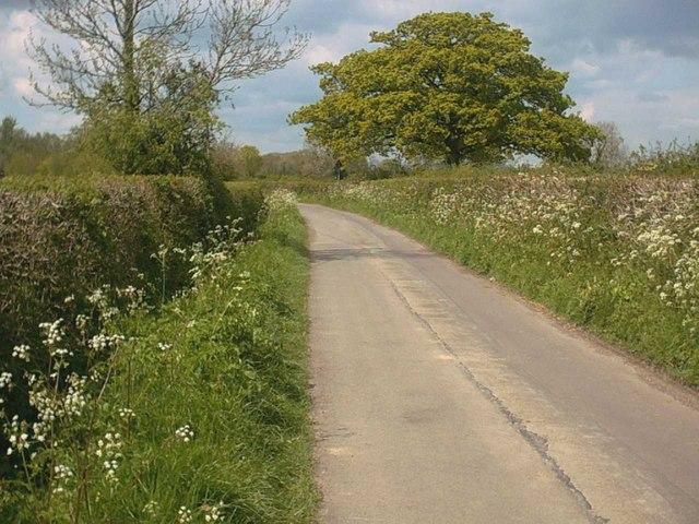 Horsington Marsh