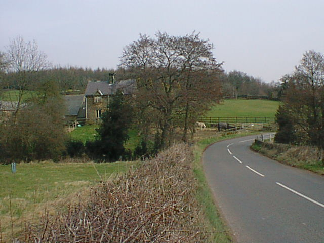 Ashover Road - Woodthorpe (Britton Wood in Background)