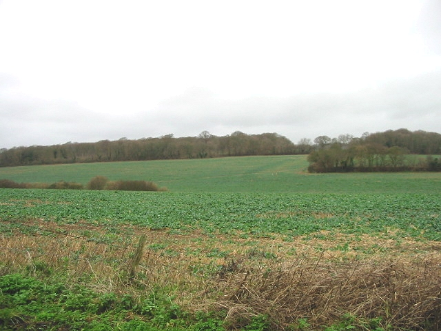 View of farmland.