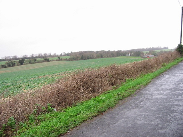Hedgerow and farmland.