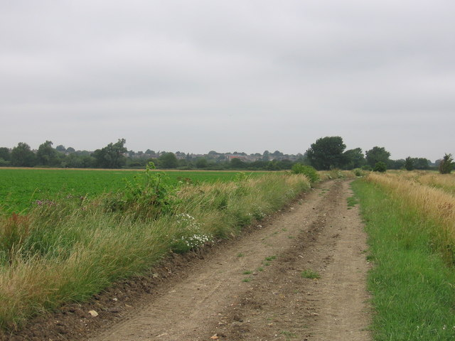 The Hereward Way at West Fen
