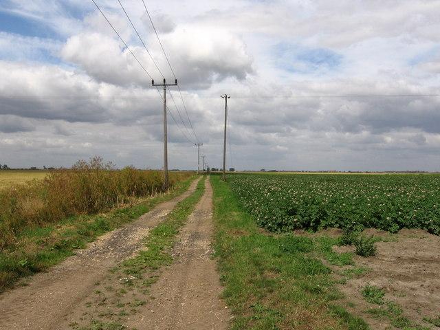 Hereward Way at Top Hake's Farm