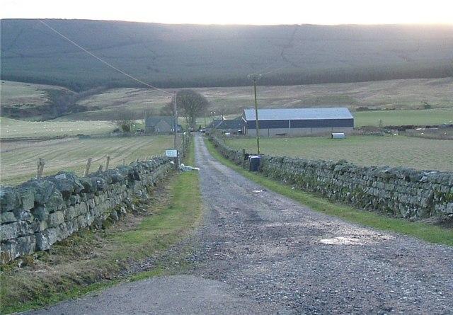 Lane to Westerton (January)