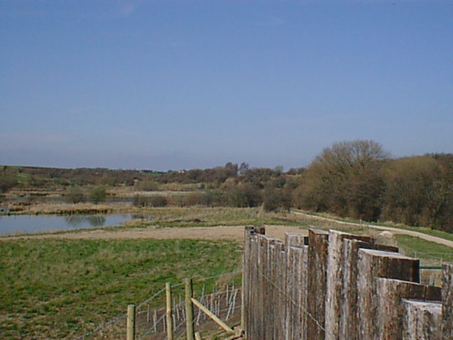 Carr Vale Ponds - Viewing Point