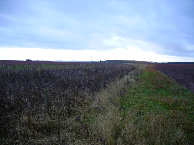 Course of ditch/burn