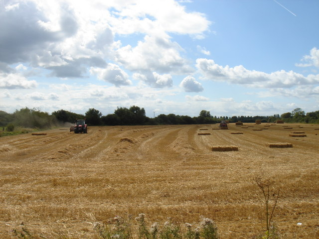 Baling after the harvest
