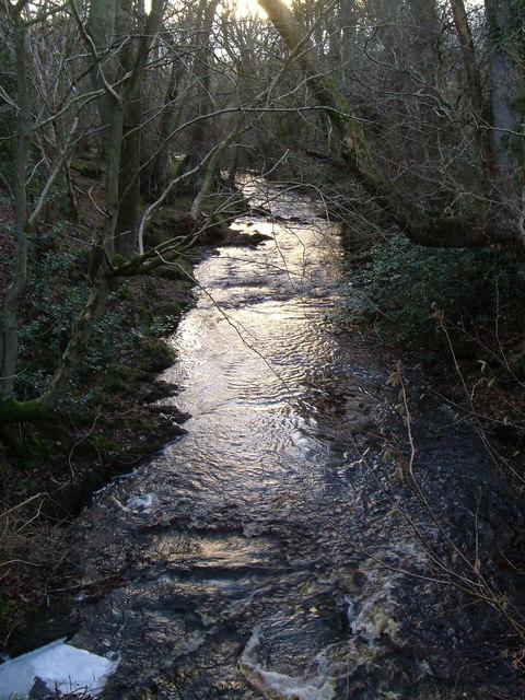Black Burn from footbridge near Cragend