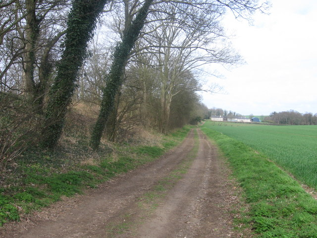 Fleam Dyke near Dungate Farm