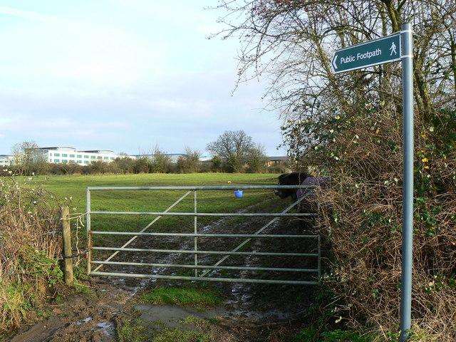 Start of footpath to Great Western Hospital, Swindon.