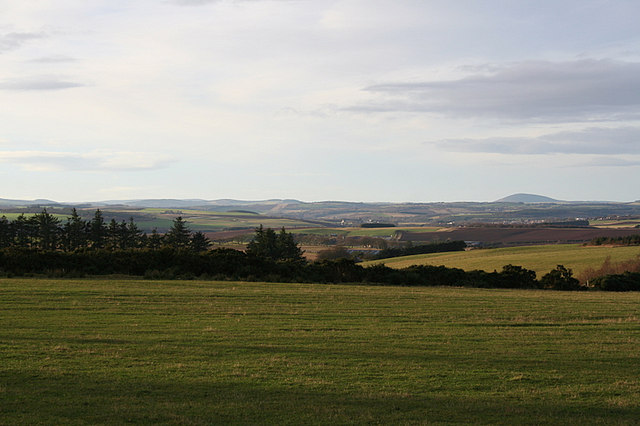 Looking to the northwest from Newton of Greeness.