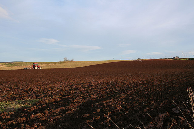 Winter ploughing at Quarryhill.