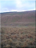 SN9017 : Meandering course of the upper Nedd Fechan by Nic Howes