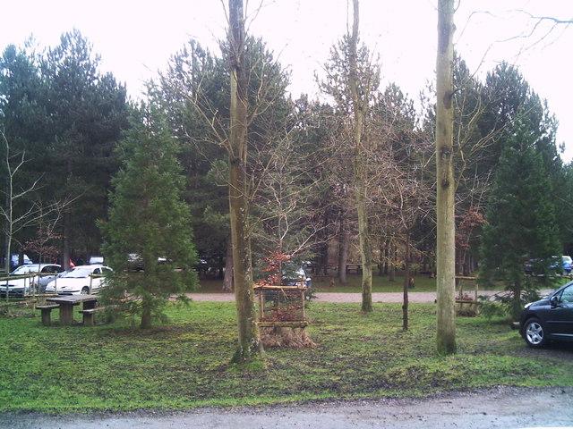 Bourne Woods car park