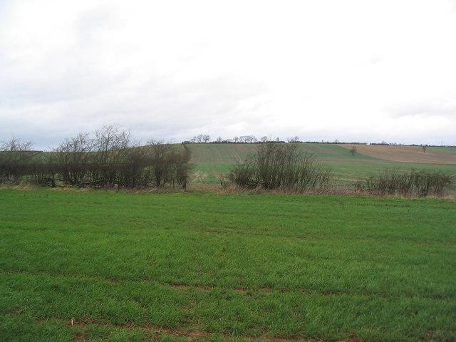 Midshires Way and Macmillan Way heading north