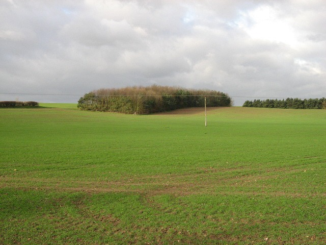 Farmland Close To Beelsby