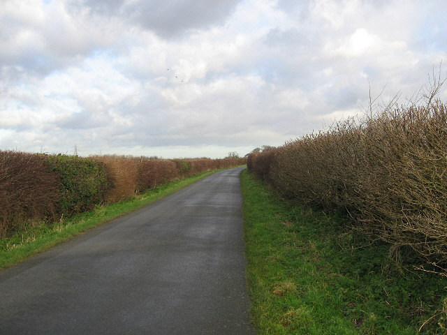 The Road From Hatcliffe