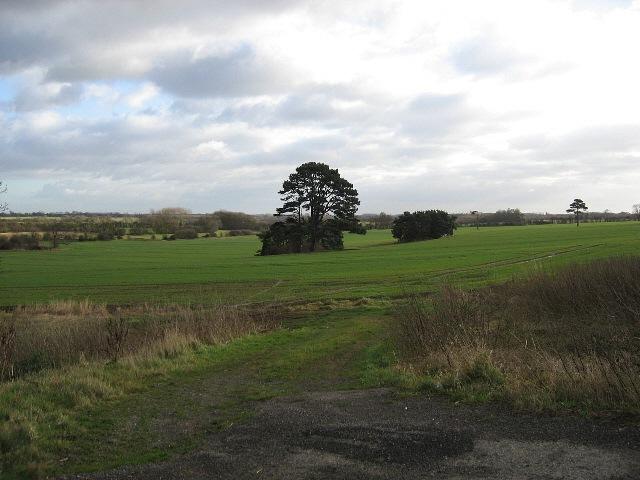 Former Parkland