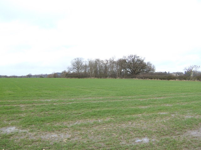 Flat fields of the Vale