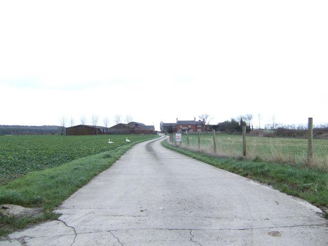 Road to Pennyswick Farm