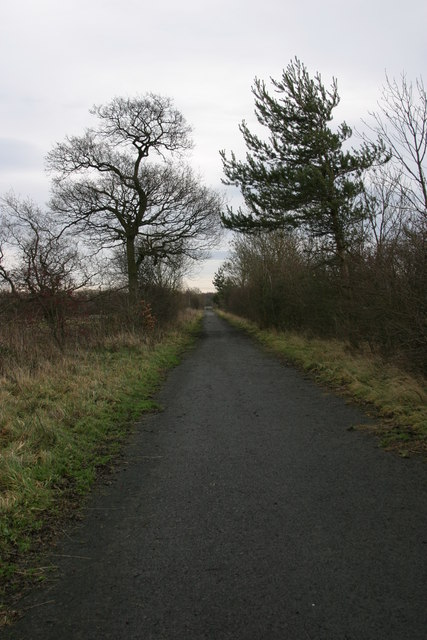 Track from site of Brenkley Drift Mine to Seaton Burn