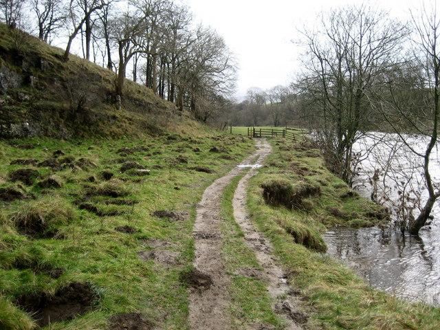 Footpath in Lower Grass Wood