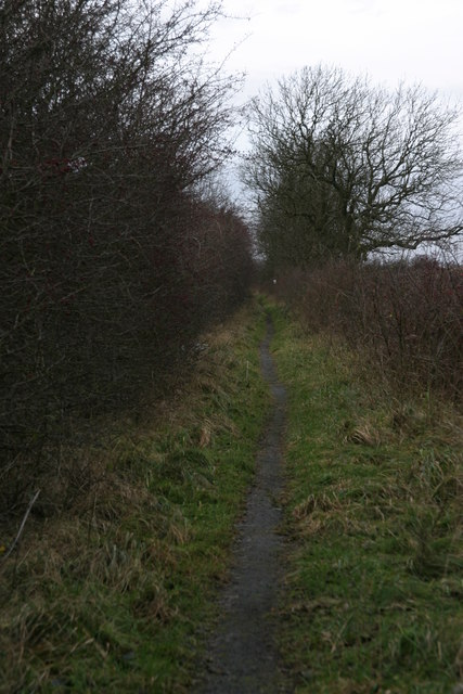 Track to the site of the Brenkley Drift Mine