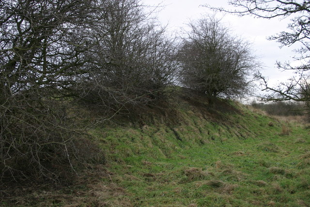 Remains of a spoil heap at the site of the Brenkley Drift Mine