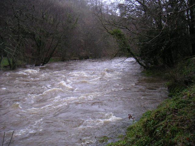River Teifi in full spate