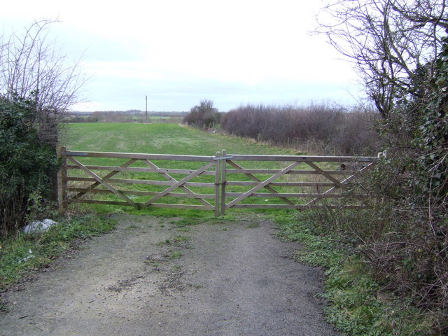 Gate and Field