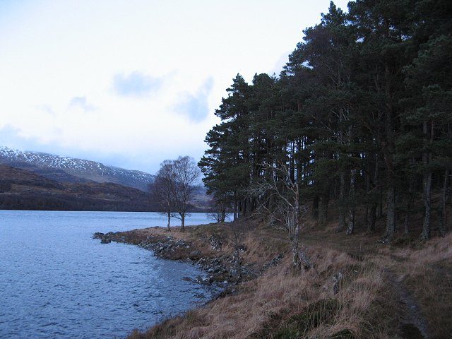 South shore of Loch Laggan