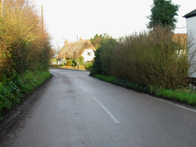 Thatched cottage on Marshborough road.